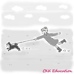 Marche-en-laisse-Rappel-Apprentissage-education-canine