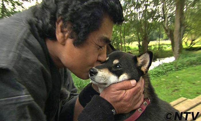 TV-Japonaise-elevage-CKK-志村どうぶつ園-Japanese-Dogs-by-Shimura-Zoo-Fujioka-Jyujyu-shiba-inu